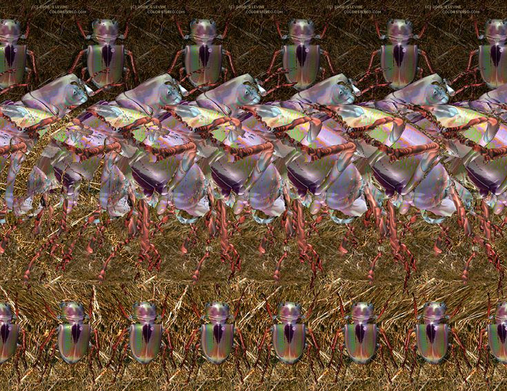 3D Stereograms -Scarabs