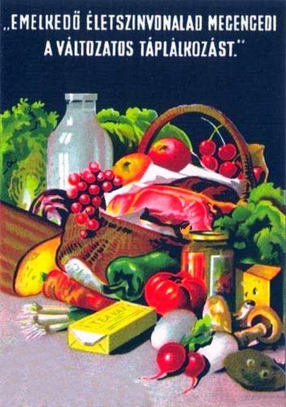 Változatos táplálkozás 1950-es évek