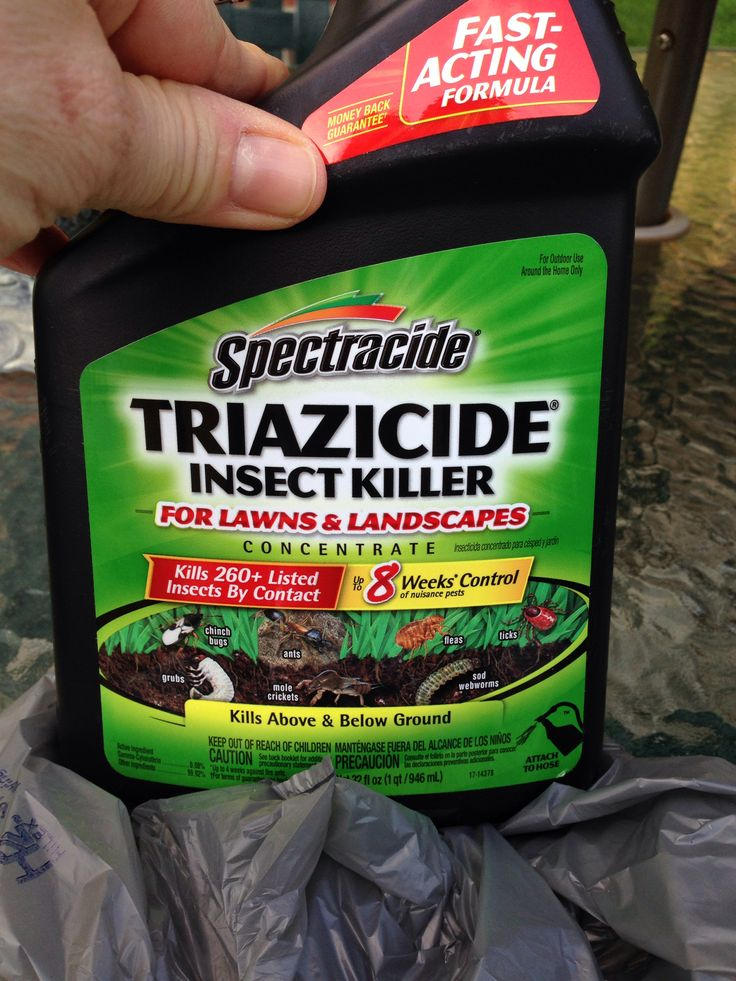 Really good for tent/bag worms