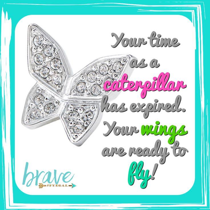 Butterflies. Origami Owl charm. Swarovski crystals. Wings. Beautiful.  www.nancypye.origamiowl.com