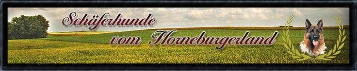 Professional German Shepherd Directory: Schäferhunde vom Horneburgerland
