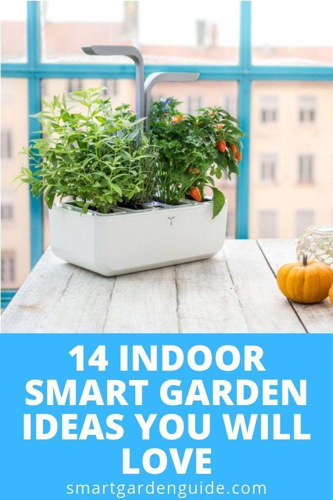 14 indoor smart garden ideas you will love. Indoor…