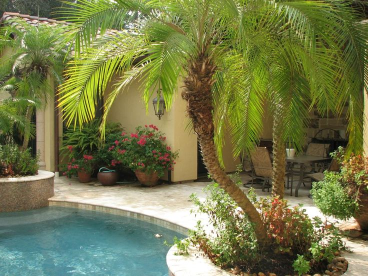 Marquise pools landscaping designs yard ideas for Pool garden nice