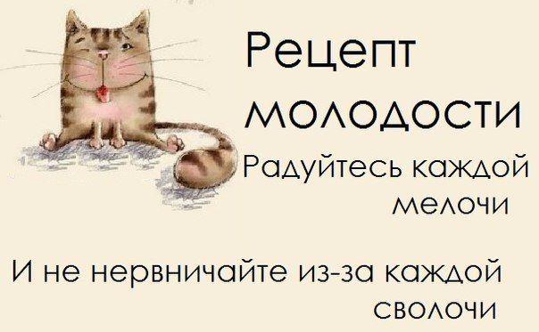 Прикольные фразочки в картинках :)) (24 фразочки) » RadioNetPlus.ru развлекательный портал