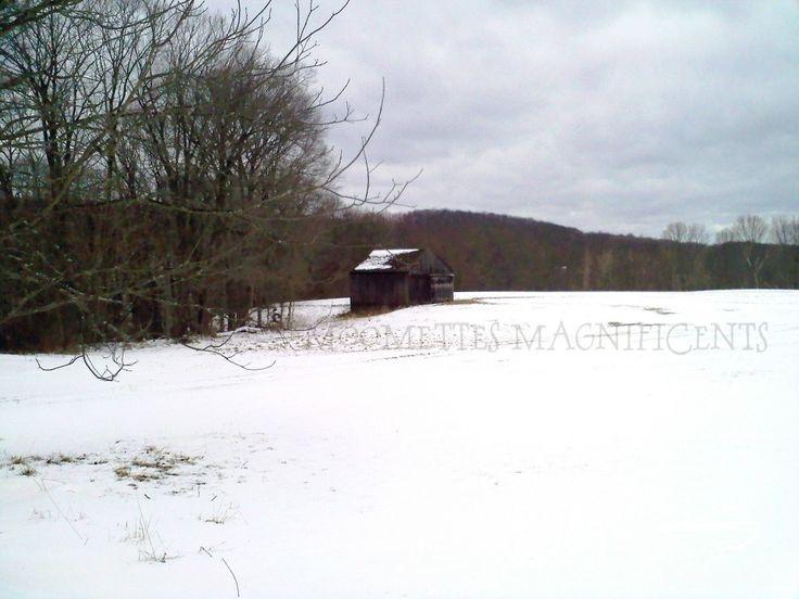 Connecticut farm barn and pasture #Connecticut #barn  http://moomettesmagnificents.com/blog/connecticut-farm-barn-and-pasture/