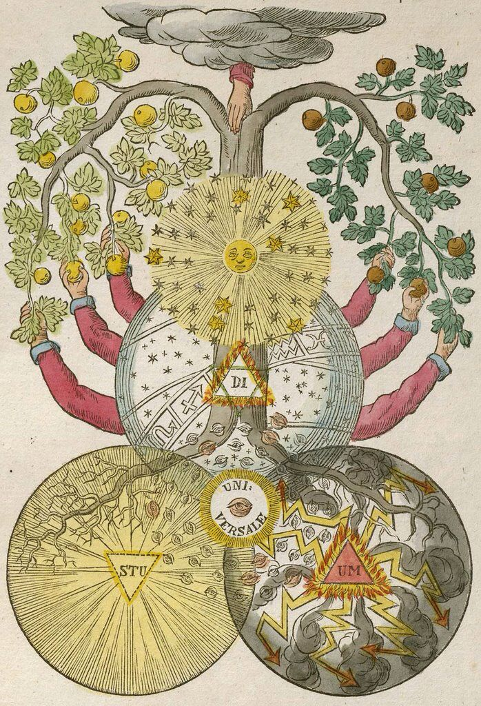 Tree of Knowledge of Good and Evil, from the Secret Symbols of the Rosicrucians, German School, 1785