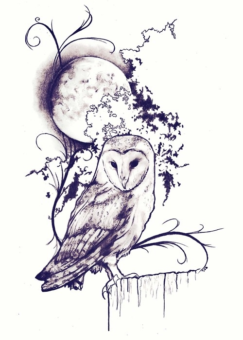 Hoot To The Moon, Pen and ink drawing by Robert Reed.