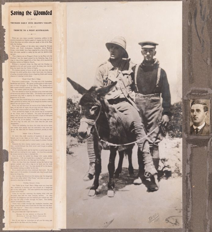 2884B: John Simpson Kirkpatrick at Gallipoli leading his donkey which carries a wounded soldier, 1915 https://encore.slwa.wa.gov.au/iii/encore/record/C__Rb1964557