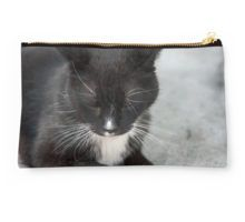 Black Cat Brings Luck Studio Pouch
