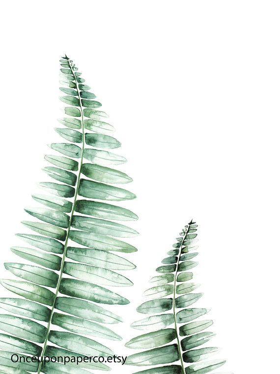 Fern Wall Print Illustration In Green Watercolor Botanical