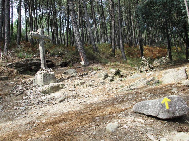 www.waytosantiago.com www.caminhoportosantiago.com www.portugueseway.com