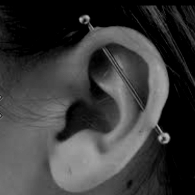 Industrial Bar piercing that I am obsessed with. Want one !