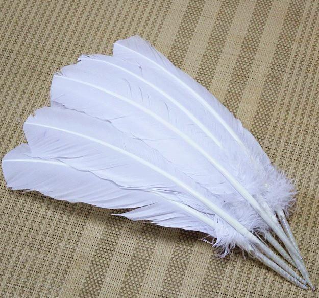 Grátis frete 50 pcs atacado 25 - 35 cm cor branca reais penas de peru naturais plumas extensões de cabelo para venda(China (Mainland))
