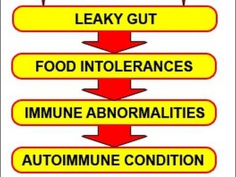 Heal Leaky Gut Syndrome