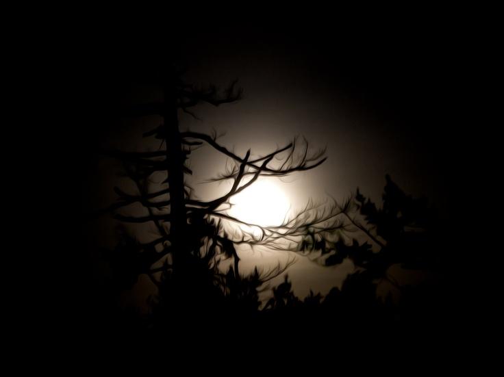 Eerie Moonscape