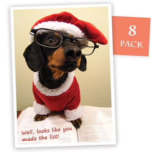 35 best Canine Christmas Cheer images on Pinterest | Animals ...