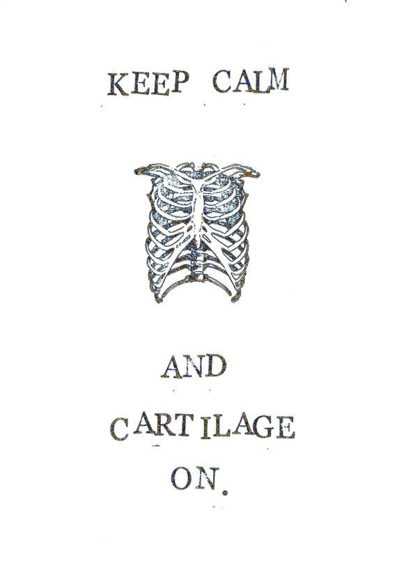 Anatomy Puns Images - Reverse Search