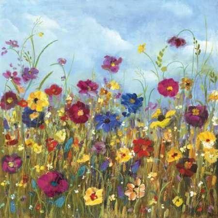 Sunshine Meadow II
