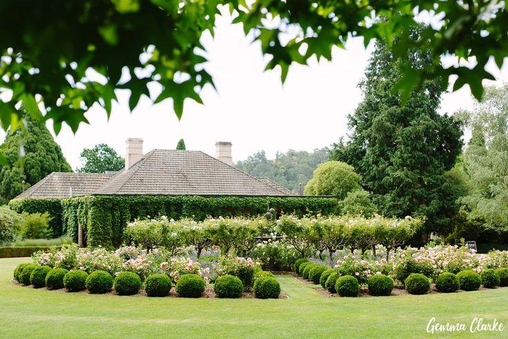bendooley-estate-wedding_gemma-clarke-photography-0042