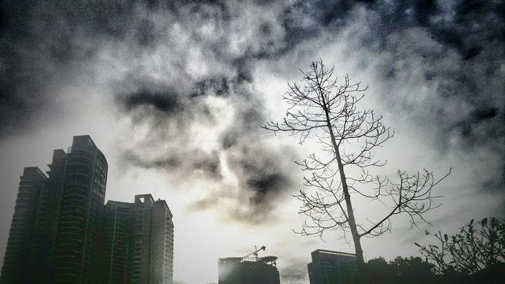 saat pepohonan mulai tak ada teman, berganti dengan gedung-gedung yang semakin mengitarinya ... disanalah kita sadari, betapa kita perlu pepohonan, yang alami, yang memberi oksigen, memberi kehidupan