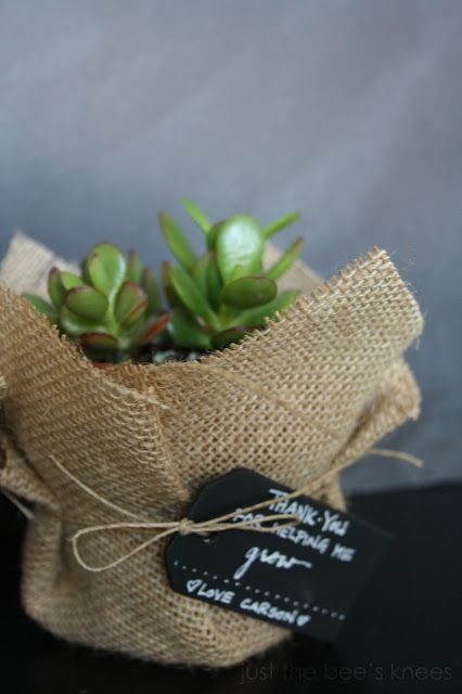 This is what I want our favors to be, in cute little pots with thank you flags