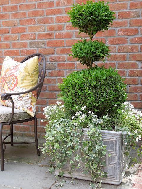best 25 patio planters ideas on pinterest planters decorative planters and diy planters - Patio Plant Ideas