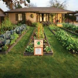 Marvelous Urban Gardeners   Phoenix Home U0026 Garden