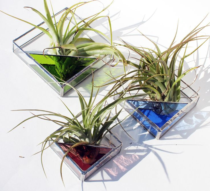 3 Stained Glass Air Plant Holders