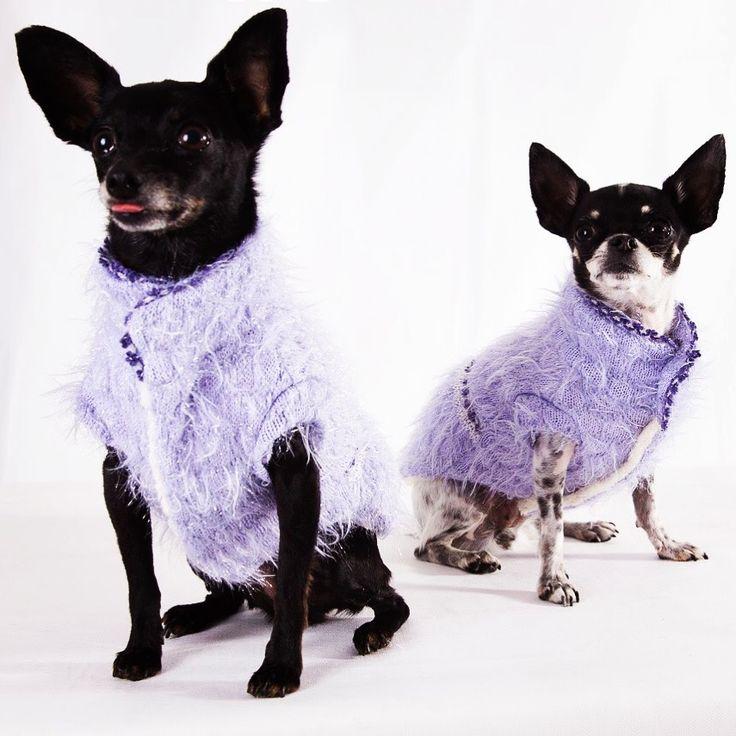 #madforpetforever #madforpet #italia #df #anteprima #collezione #autunno #inverno #gattinara #venezia #fashion #dogs #sumisura #madeinitaly  donatella.madforpet@gmail.com www.madforpetitalia.it