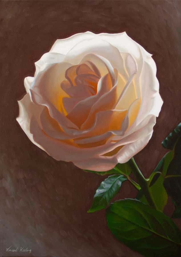 Flame, oil painting of a white rose, by Vincent Keeling www.vincentkeeling.com