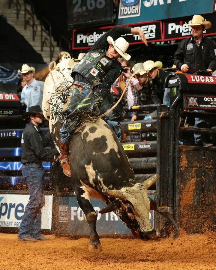 Pro Bull Rider …