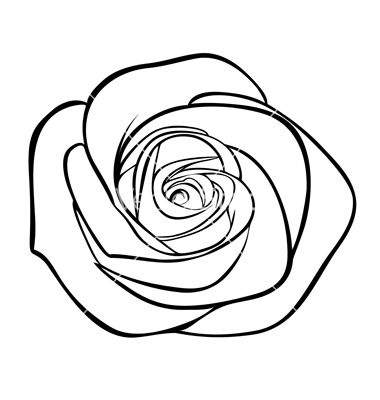 Flowers For > Rose Black And White Drawing Png