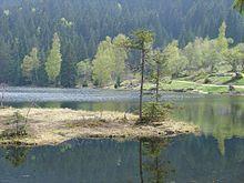 Schwimmende Insel – kleiner Arbersee