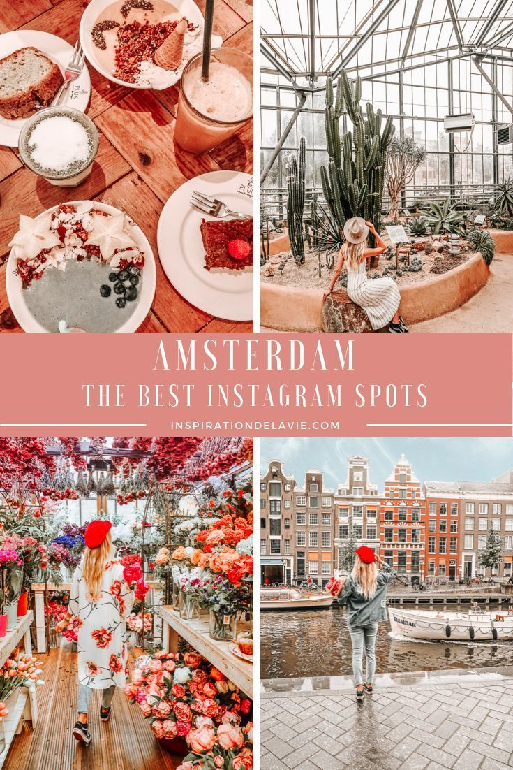 Amsterdam Guide   Tips and Top Instagram Spots   Amsterdam guide ...