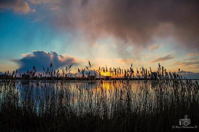 Sunset at lake Binnenschelde.  #uwn_holland  #super_holland  #wonderful_holland  #instanetherlands  #holland_photolovers  #dutch_connextion  #ig_discover_holland  #aangenaambergenopzoom #vvv_brabantse_wal  #visitbrabant  #global_hotshotz  #tv_aqua  #bns_waters  #pocket_waters_  #splendid_reflections  #reflectiongram  #loves_reflections  #allbeauty_addiction  #eclectic_shotz  #heart_imprint  #gottolove_this  #worldbestgram  #fotocatchers  #amazing_shots  #sky_sultans  #sky_perfection…