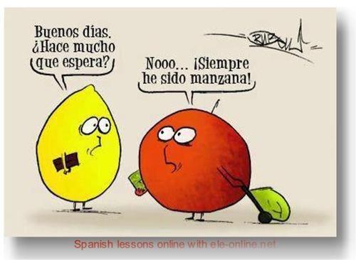 ¡Chistes lingüísticos! - www.vinuesavallasycercados.com