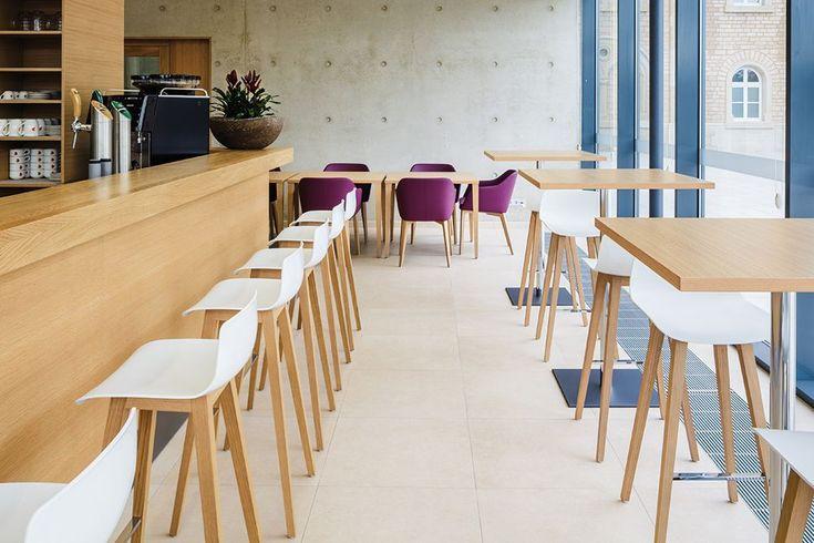 Zenith Interiors: Fina Club