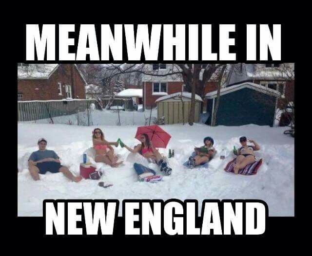 fee3ca95ff4ade0277c5ad6fcc51eee8 funny gifs funny memes 286 best ugh winter in new england! images on pinterest england