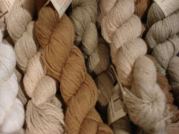 grown cotton