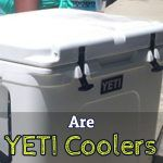 YETI Coolers - Worth It?  Or Just Hype? (YETI Reviews 2017)