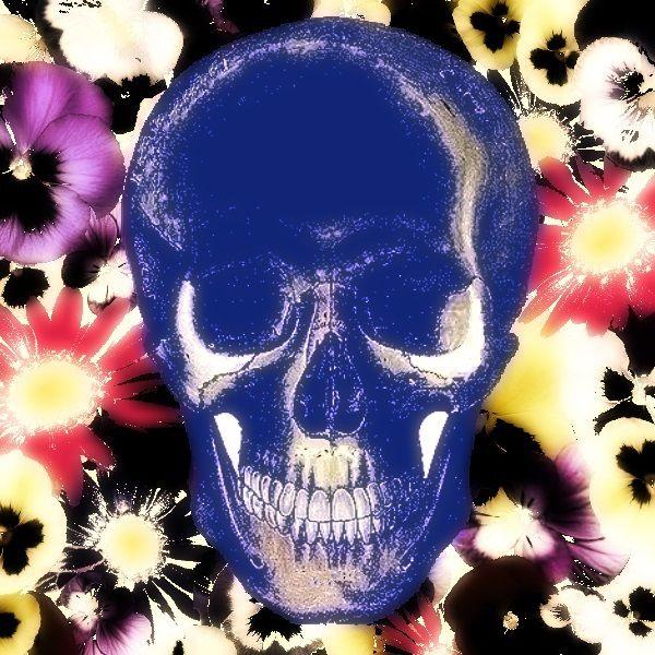 Postmortal modrá (brož) Vlastní grafický design by popsofistia je na aluminiovém lůžku zalitý křišťálovou pryskyřicí. Zapínání na brožový můstek Velikost 4cmx4cm