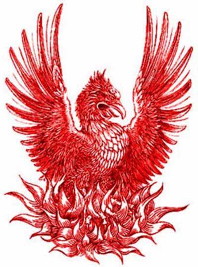 Desenhos para Tatuagens de Fênix na Barriga, na Perna
