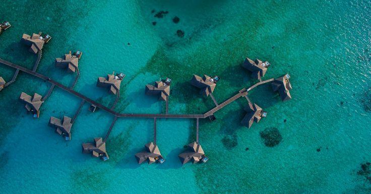 MARAV(ILHAS) MALDIVAS: Romance, privacidade e calmaria em sua lua de mel no Oceano Índico. Descubra as belezas da vida marinha enquanto desfruta de regalias exclusivas ao lado da pessoa amada. Celebre o amor e a natureza em meio às praias de areia clara e da imensidão turquesa que é o mar maldívio.