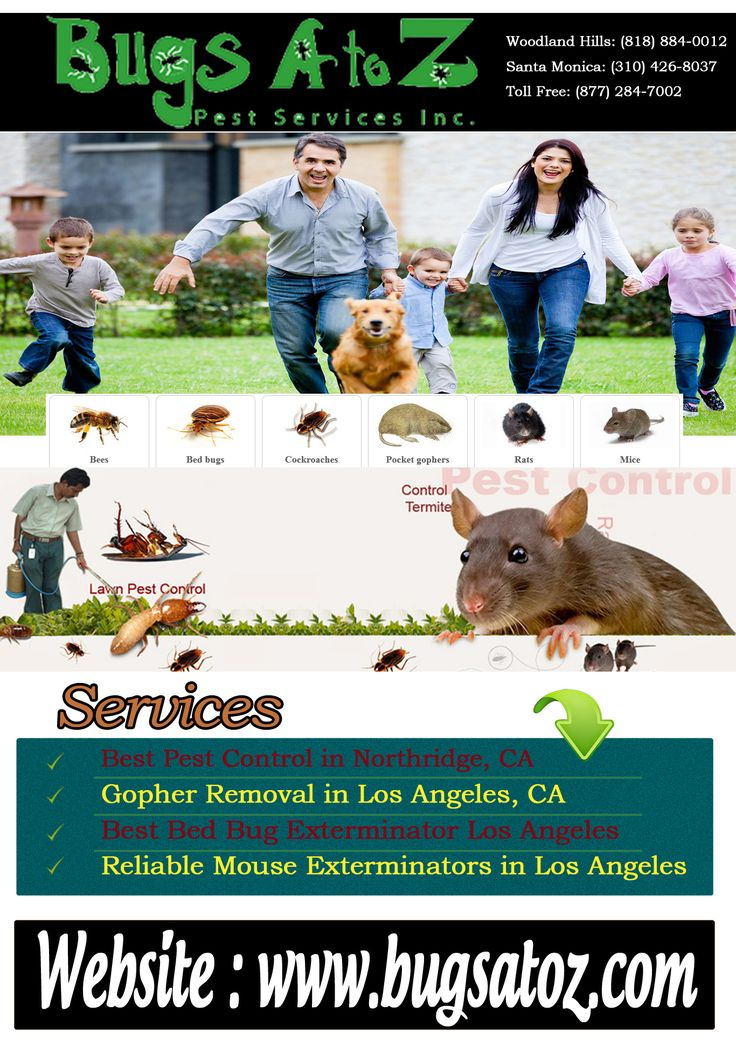 Best Pest Control in Northridge, CA If you are tired of dealing with pests in your home and need help to make your home pest free, then contact Bugs A to Z for the Best Pest Control in Northridge, CA. We are fully equipped with modern appliances and capable of providing pest control services in a safe and effective manner by using eco-friendly solutions. For more information please visit us : http://bugsatoz.com/