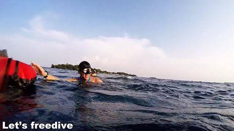 Let's Freedive adalah organisasi selam bebas (freedive) untuk memberikan pelatihan cara melakukan kegiatan selam bebas (freedive) dengan aman yang dilatih oleh pengajar yang telah mengikuti pendidikan dan teruji oleh badan organisasi AIDA International.