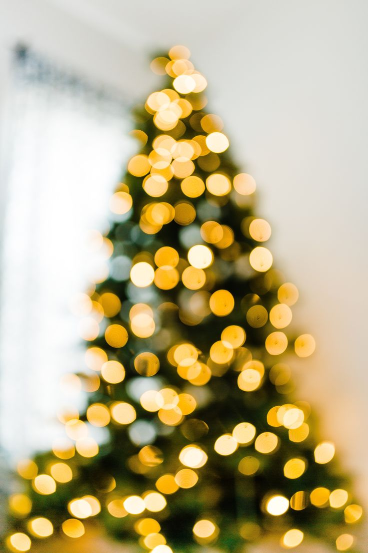 How To Blur Christmas Lights In Background Utah Photographer Christmas Tree Photography Christmas Lights Christmas Light Photography