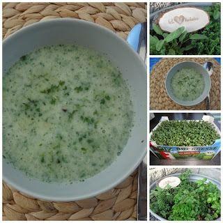Cremige Kressesuppe - Cremige Kressesuppe