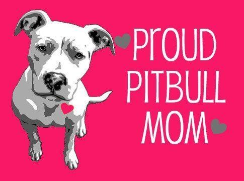 Love  to all you Pittbull moms on the board..  very proud to own a loving silly hyper pit!