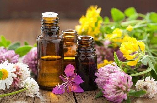精油は植物の有効成分を抽出した揮発性のある芳香物質で、薬効成分と香りが精神的面や自己免疫機能を強化してくれます。精油を選ぶ際には天然成分100%であることが大切です。以外と知らない精油の使用期限や保存法、使用の際の注意点など、精油の基礎知識を紹介します。