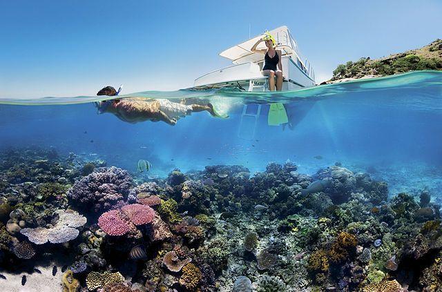 Daydream Island Great Barrier Reef, Queensland - News - Bubblews